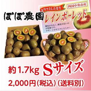 【1月1.2日発送】レインボーレッド キウイ 2Lサイズ 1.0kg(フルーツ)