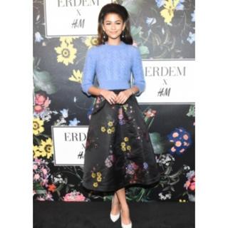 アーデム(Erdem)のtooru730様専用 Erdem H&M 刺繍 スカート(ひざ丈スカート)