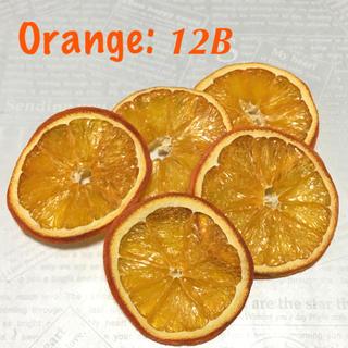 オレンジ×5 ドライフルーツ花材:12B(ドライフラワー)