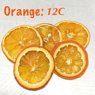 オレンジ×5 ドライフルーツ花材:12C(ドライフラワー)