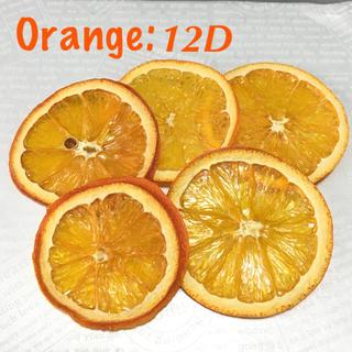 オレンジ×5 ドライフルーツ花材:12D(ドライフラワー)