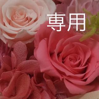 ムジルシリョウヒン(MUJI (無印良品))の【たっすぃー!さま専用】グリーンカレー ナン 4袋セット(その他)