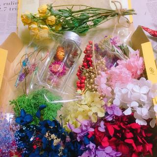 ドライフラワー新春メガボックス❣️ハーバリウム❣️花材(ドライフラワー)