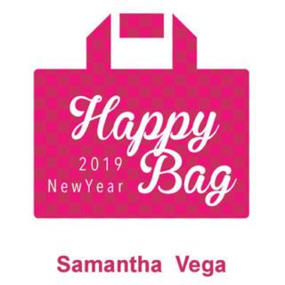 サマンサベガ(Samantha Vega)のサマンサベガ 福袋 2019 バック2点入り!大当たり 最安(ショルダーバッグ)