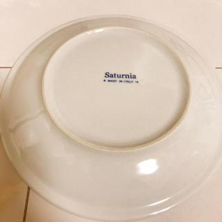 サタルニア(Saturnia)のサタルニア ディナープレート24cm2枚セット(食器)