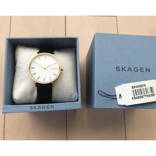 skagen スカーゲン 腕時計 HALD SKW2678 ハルド