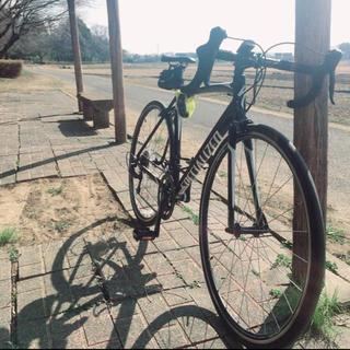 スペシャライズド(Specialized)のスペシャライズド ロードバイク(自転車本体)