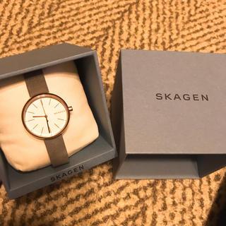 スカーゲン(SKAGEN)の値下げ可能!Signatur Leather Watch(腕時計)