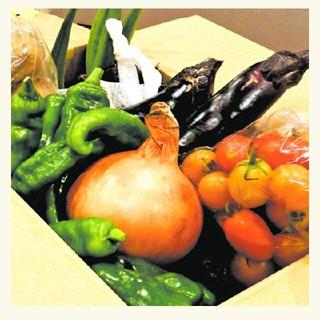vivi お野菜セット5(野菜)
