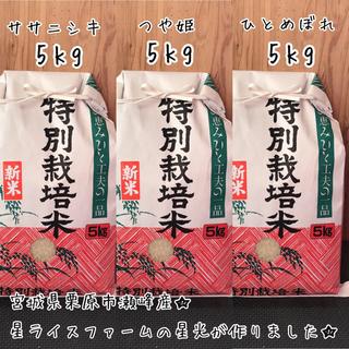 3品種食べ比べ5kgセット★白米(米/穀物)