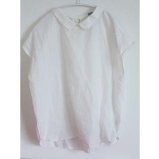 エボニーアイボリー(Ebonyivory)のエボニーアイボリー 襟付き半袖シャツ 白 ブラウス(シャツ/ブラウス(半袖/袖なし))