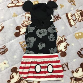 ディズニー(Disney)のペットパラダイス♡ミッキー(ペット服/アクセサリー)