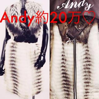 アンディ(Andy)のR☆R様専用になります♡♡(毛皮/ファーコート)