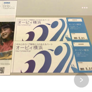 週末値下げ オービィ 横浜 ペア チケット (遊園地/テーマパーク)