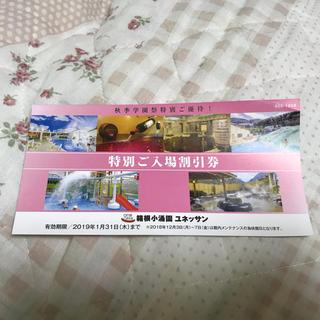 箱根小涌園ユネッサン 特別ご入場割引券(プール)