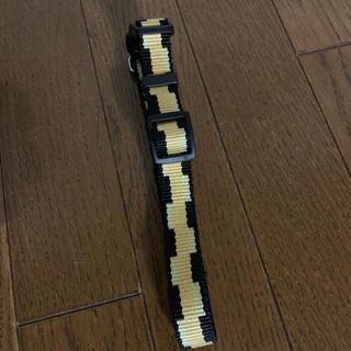 ドギーマン犬用首輪(おもちゃ/ペット小物)