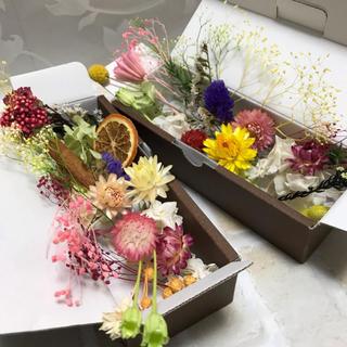 2019年 福袋 ハンドメイド用 花材BOX(ドライフラワー)