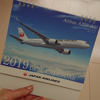 ジャル(ニホンコウクウ)(JAL(日本航空))のJAL 2019 カレンダー(カレンダー/スケジュール)