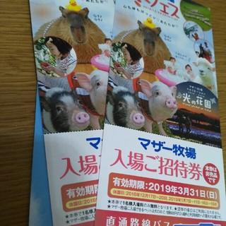 マザー牧場無料入場券2枚セット(動物園)