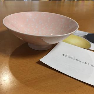 ハクサントウキ(白山陶器)の新品未使用  平茶碗  白山陶器(食器)