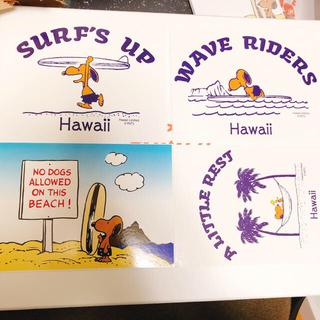 スヌーピー(SNOOPY)のハワイ限定 スヌーピー ポストカード(写真/ポストカード)