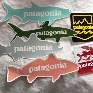 パタゴニア(patagonia)の未使用 パタゴニア シール (その他)