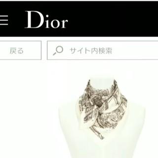 クリスチャンディオール(Christian Dior)のDior(バンダナ/スカーフ)