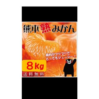 産地直送❣️甘くなかったら返品可能❣️訳あり 熊本産あま〜い 熟みかん 8kg(フルーツ)