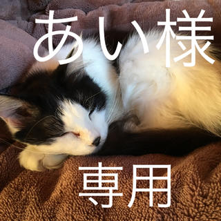 あい様 専用☆アロマストーン(アロマ/キャンドル)