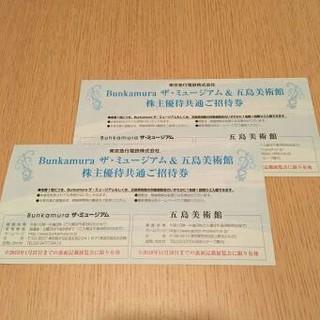 2枚 トレチャコフ美術館 ロマンティック ロシア 招待券(美術館/博物館)