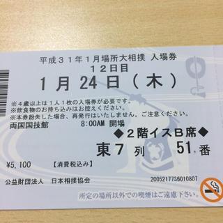 大相撲初場所12日目1/24木イスB席(相撲/武道)