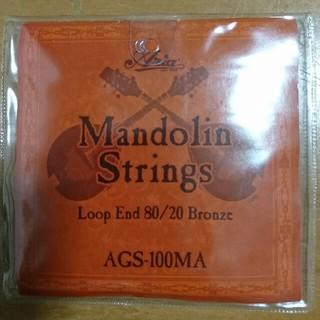 【未開封】マンドリン 弦 Mandolin Strings(マンドリン)