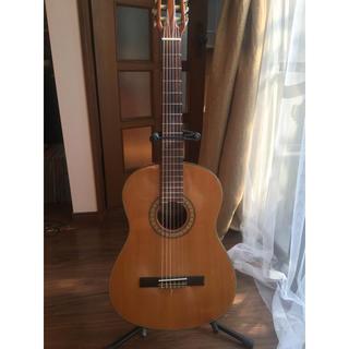 クラシックギター  Vantage VSC-20 ソフトケース付き(クラシックギター)
