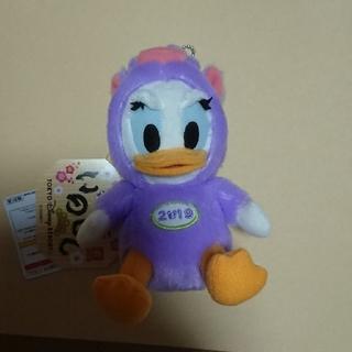 デイジー(Daisy)の2019 ディズニーリゾート デイジー 干支ぬいぐるみバッジ(いのしし)(キャラクターグッズ)
