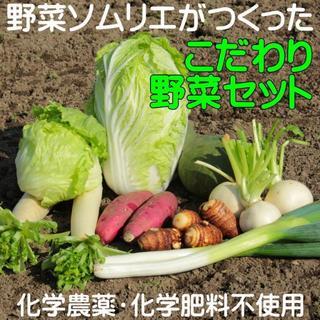 【100サイズ】野菜詰め合わせ(野菜)