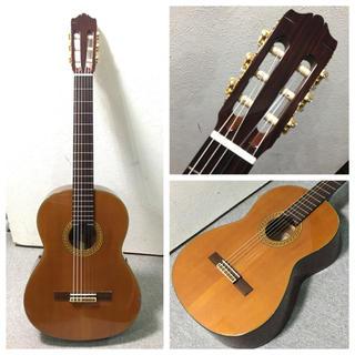 ヤマハ(ヤマハ)のTOP単板 ヤマハ ガットギター クラックあり特価(クラシックギター)