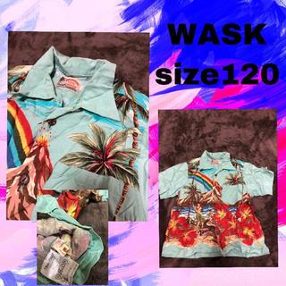 WASK - WASK120センチ アロハ