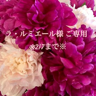 TADASHI SHOJI - ◇新品未使用タグ付き◇ tadashi shoji ドレス