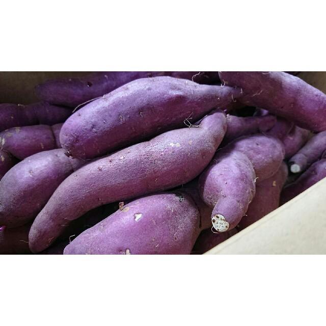 《TVで話題沸騰!健康効果抜群》ねっとり甘い幻の蜜芋紅はるか約10kg 送料無料 食品/飲料/酒の食品(野菜)の商品写真