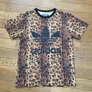 アディダス(adidas)のアディダス adidas レオパード 豹柄 Tシャツ 美品 XS (Tシャツ/カットソー(半袖/袖なし))