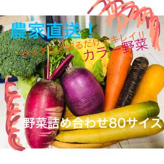 【あきもと農園直送!】彩り野菜 お試しパック(野菜)