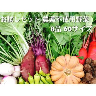 農薬・肥料不使用 野菜セット お試し版(野菜)