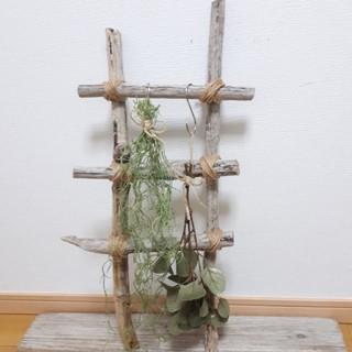 流木ラダー(家具)