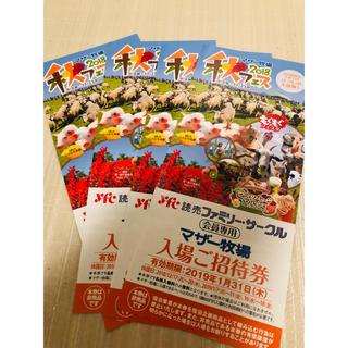 マザー牧場 招待券 2枚(遊園地/テーマパーク)