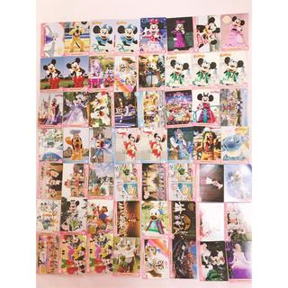 ディズニー(Disney)のディズニーリゾート コレクションカード まとめ売り(カード)
