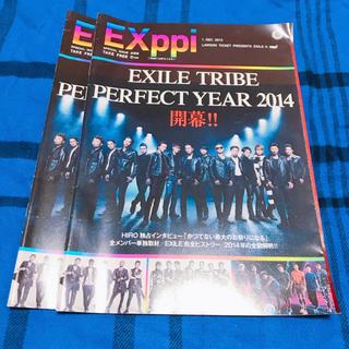 エグザイル トライブ(EXILE TRIBE)の୨୧ .. EXppi パンフレット(その他)