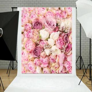 フォト背景 バラ 薄ピンク(その他)