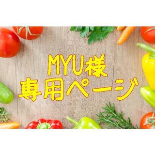 ★MYU様専用ページ(フルーツ)