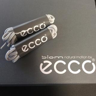 エコー(ECHO)の靴ひも ecco エコー バラ売り可(スニーカー)