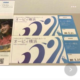 限定値下げ オービィ横浜 ペアチケット(遊園地/テーマパーク)